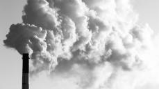 Karbon Nötr Şirketler Ve Devletler
