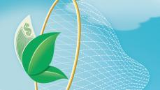 Yeşil Tüketiciyi Yakalamak